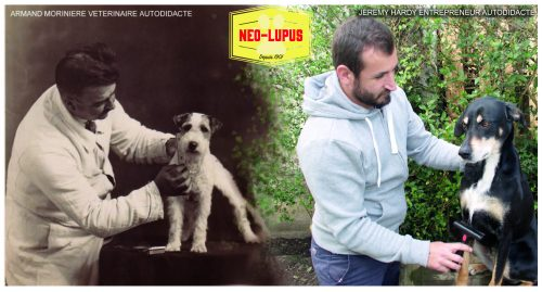 Néo lupus soins animaux campement