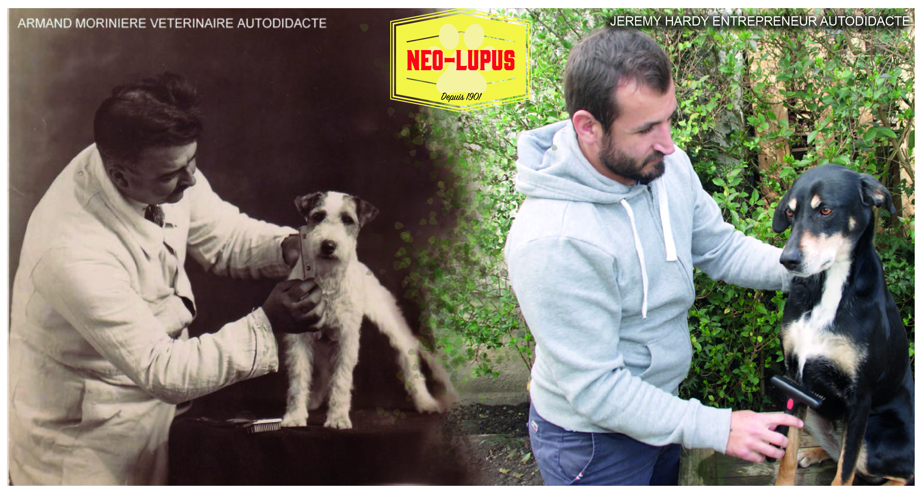 LES CAMPEURS #37 : Néo-Lupus